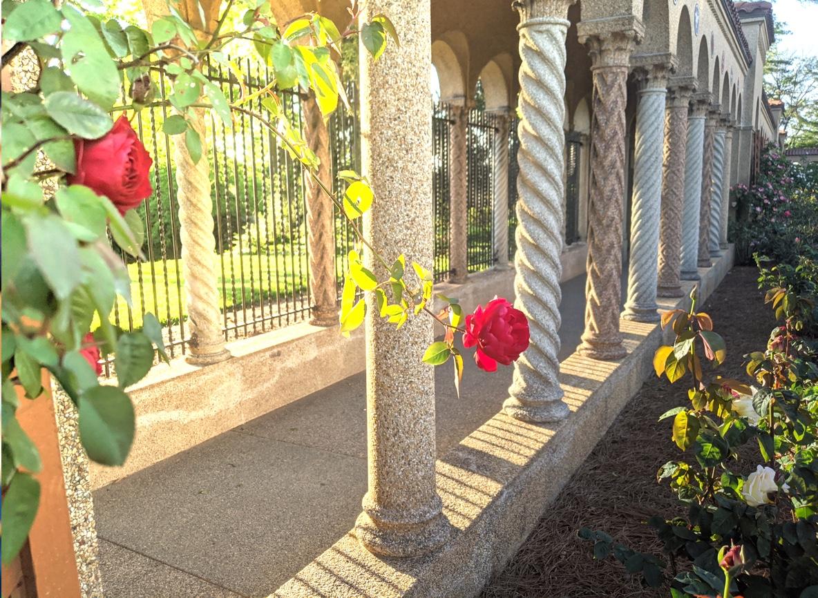 Columns & Flowers